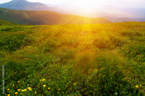 Canvas Prints Honey Mountain with the sun