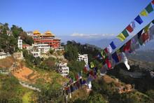 Thrangu Tashi Yangtse Moastery