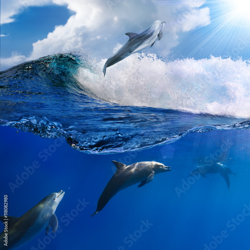 Obrazy Delfiny oceanview-with-sunlight-a-flock-of-playful-dolphins-swimming-underwater-and-one-of-them-leaping-out-from-big-sea-surfing-wave