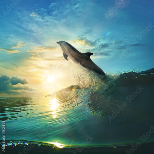 Ocean-view design postcard. Beautiful colorful breaking surfing ocean wave rushing at sunset time