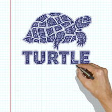 A Turtle Drawn With A Pen. The...