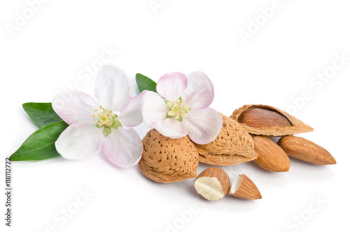 Photo  Almonds with leaves and flowers close up on the white background