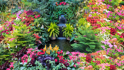 FototapetaColorful Flower Display in a Canadian Garden