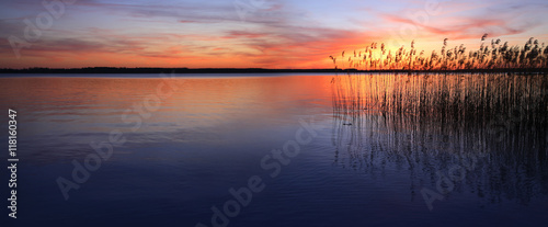 Foto op Plexiglas Meer / Vijver Sunset on a Lake with Reeds