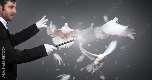 magician performs the trick with a pigeon