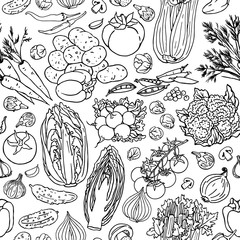Fototapeta Warzywa Vegetable sketchy line seamless pattern