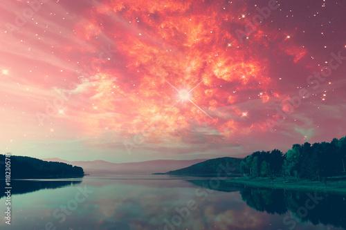 Foto auf AluDibond Koralle alien landscape