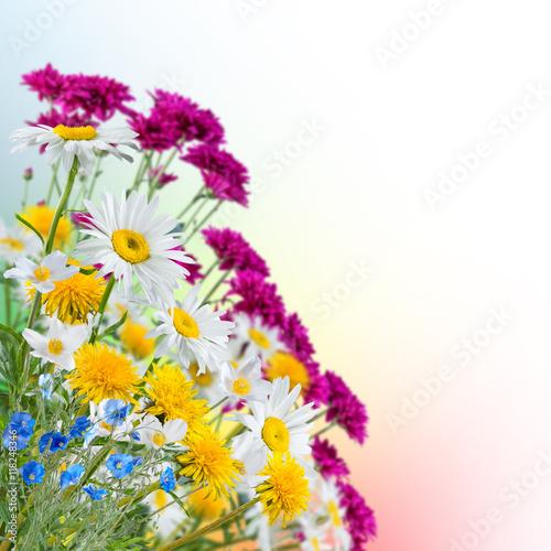 Deurstickers Vlinder Spring background with flowers
