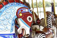 Carousel Horse Head
