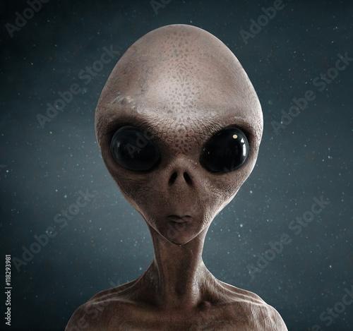 Garden Poster UFO alien