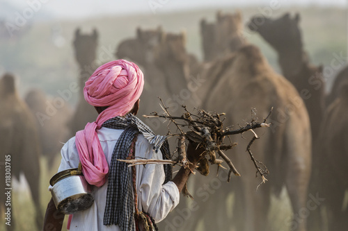 Camel herder carrying firewood, Pushkar, Rajasthan, India