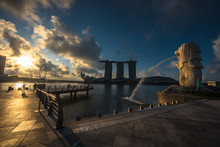 Merlion At Morning