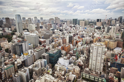 Downtown Tokyo skyline viewed from above Poster