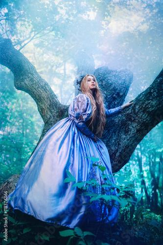Fototapeta Princess in magic forest obraz na płótnie