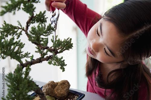 Bonsai Japanese girl pruning bonsai tree