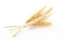 Wheat Ears Isolated On White B...