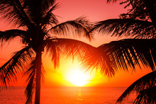Tropical Island Sunset With Si...