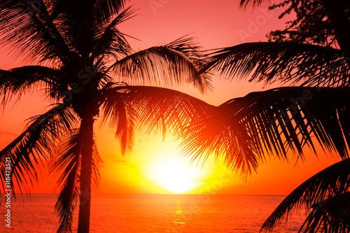 Obrazy na płótnie Canvas Tropical sunset