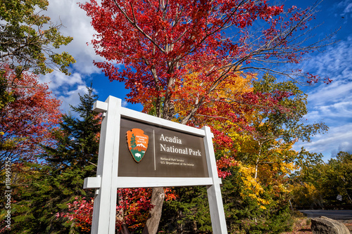 Beautiful fall colors of Acadia National Park in Maine Canvas Print