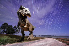 Dinosaurs Model With Falling Star Background