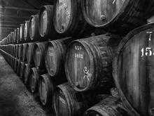 Barrels Of Port In Winery