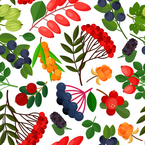 Fototapety, obrazy: Seamless pattern with branches of yellow sea buckthorn, lingonberries, cranberries, cloudberries, rosehig and elderberry twigs on white background