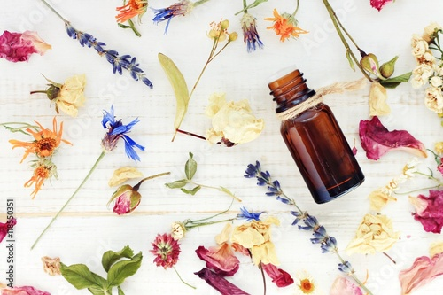 Obraz Aromatic essential oil. Top view dropper bottle among colourful dried flowers, medicinal herbs gathering, scattered white wooden table.   - fototapety do salonu