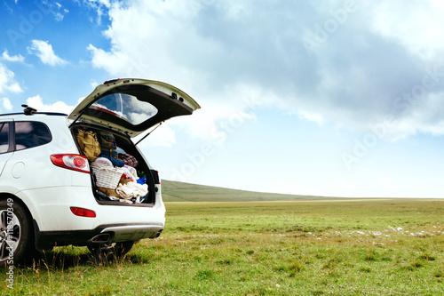Fotografie, Obraz  Car with full trunk in field