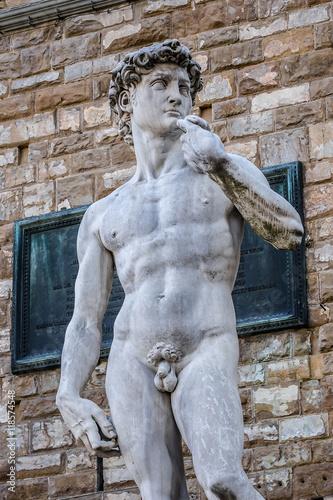 Fotografía  Famous statue Michelangelo's David (1504). Florence. Italy.
