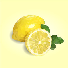Obraz na Szkle Vector illustration of limon triangulation.