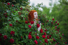 Gothic Girl With Red Hair Near The Bushes Of Purple And Red Roses In The Summer Garden. Fashion Photo Outdoors. Gloomy Mysterious Woman With Curly Hair Is Surrounded By A Garden With Flowers