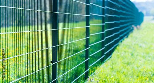 Metal fence in green field Fototapeta