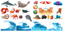 Summer Theme Set With Waves And Sea Animals