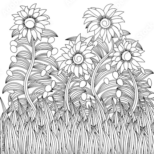 Coloring Page For Adult Anti Stress Coloring And Other Decoration