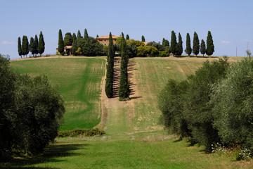 Panel Szklany Podświetlane Toskania Paysage Toscane