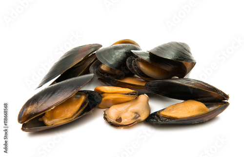 Poster Coquillage mussels isolated