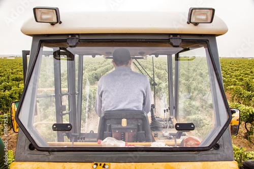 Fotografía  Vendimia con tractor