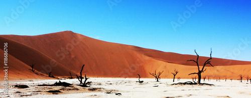 Poster de jardin Desert de sable Beautiful desert picture