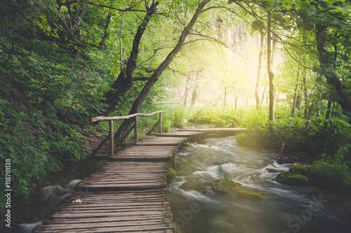 Photo sur Toile Route dans la forêt Wooden path across river in dark green forest