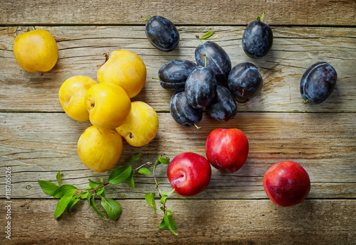 various kinds of fresh plums