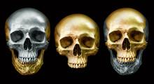 Golden And Metal Skull