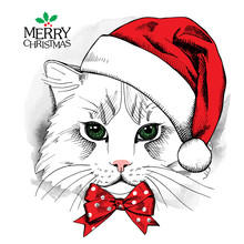 Christmas Poster With Cat Portrait In Red Santa's Hat And Bow. Vector Illustration.