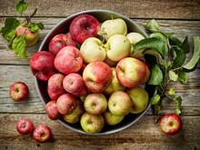 Plate Of Various Fresh Apples