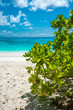 Beautiful tropical white sand beach with blue sky summer holiday
