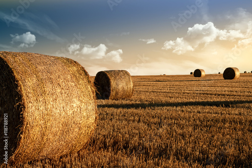 Papiers peints Beige harvested field with straw bales in summer