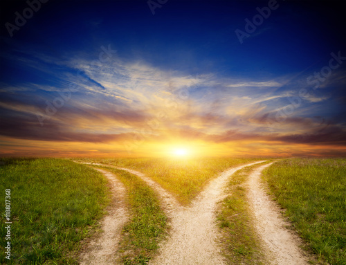 fork roads in steppe on sunset sky background Canvas Print