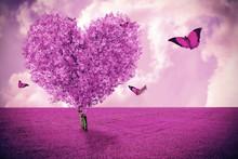 Beautiful Field With Heart Sha...