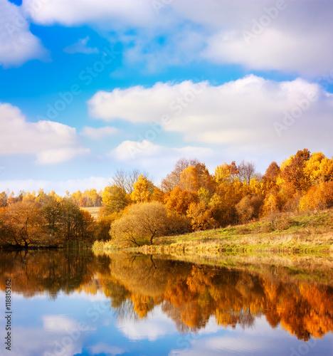 Aluminium Prints Autumn Autumn Landscape. Yellow Trees, Blue Sky and Lake.