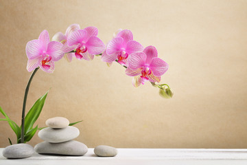 Obraz na płótnie Canvas Orchid flowers and spa stones