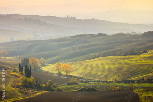 Natural Sunny Autumn landscape - Wavy fields at sunrise